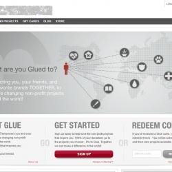 Web Portal empowering NGO